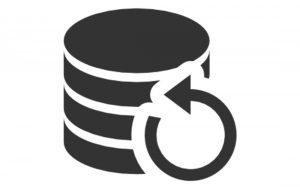 Data-Data-backup-icon